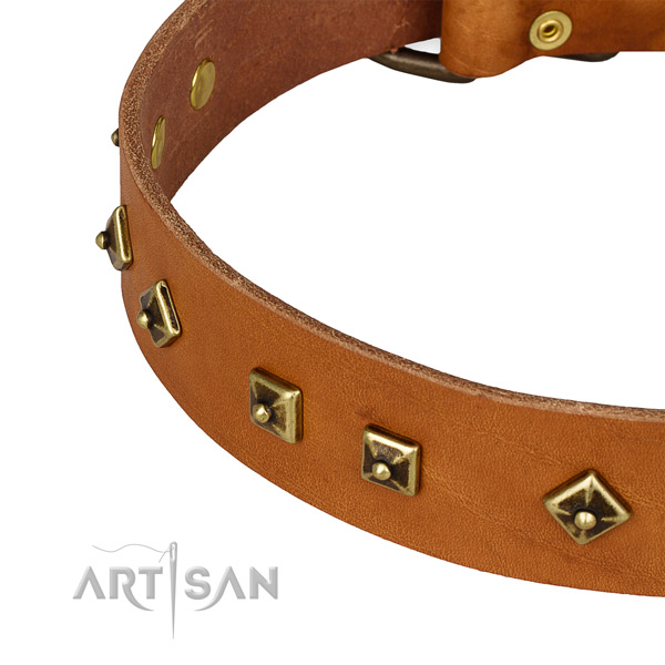 Walking full grain leather collar with rust resistant buckle and D-ring