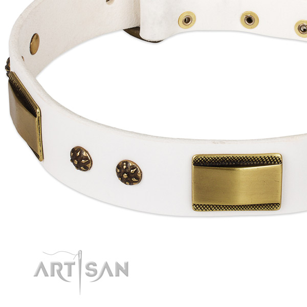 Walking full grain natural leather collar with strong buckle and D-ring