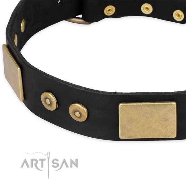 Daily use full grain natural leather collar with strong buckle and D-ring