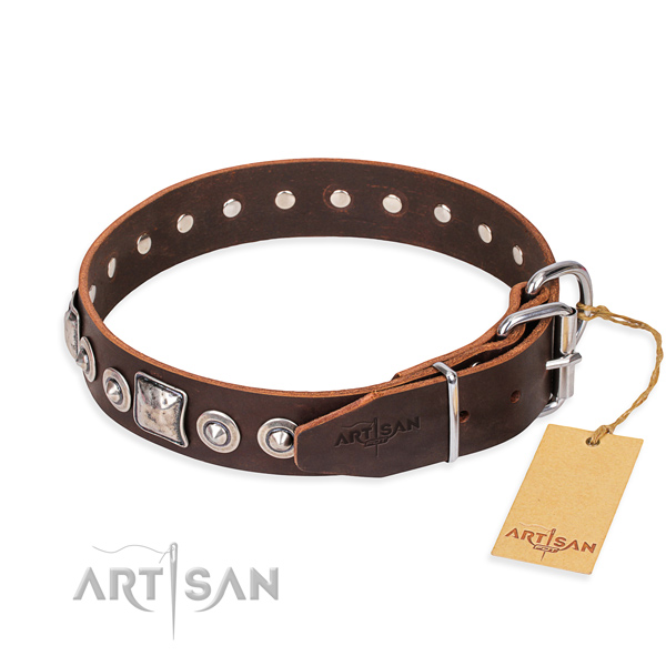 Stylish leather collar for your handsome pet