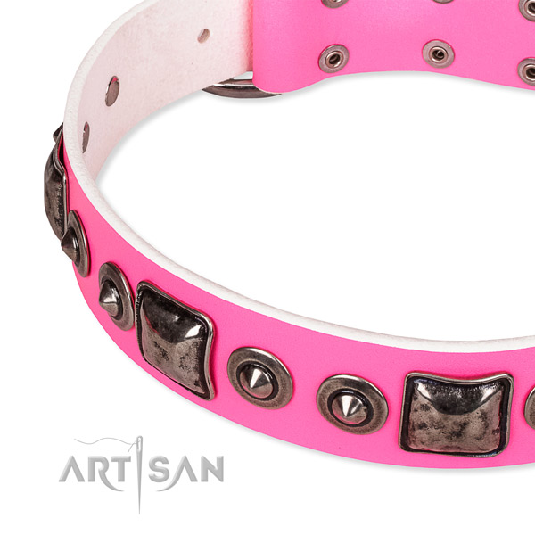 Snugly fitted leather dog collar with resistant to tear and wear rust-proof fittings