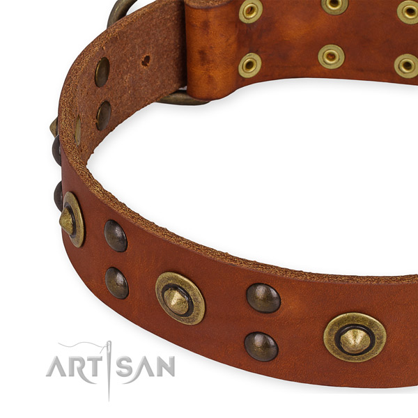 Easy to use leather dog collar with resistant to tear and wear durable set of hardware