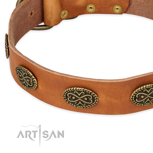 Walking genuine leather collar with corrosion resistant buckle and D-ring