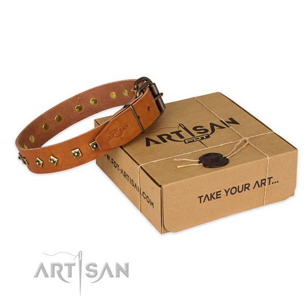 Perfect fit genuine leather dog collar for stylish walks