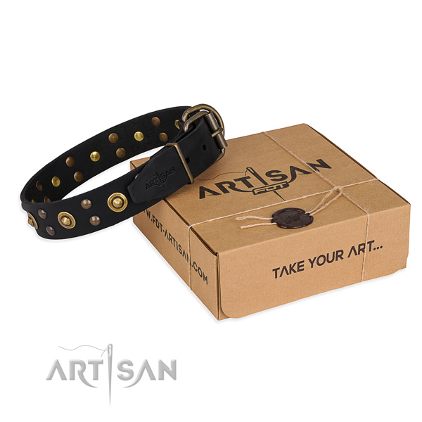 Designer full grain natural leather dog collar for everyday use