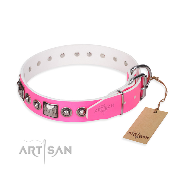 Durable leather collar for your gorgeous dog