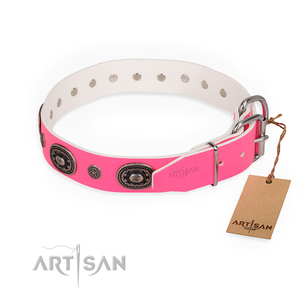 Fashionable leather collar for your elegant pet
