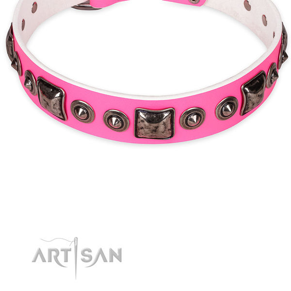Resistant leather dog collar with strong elements