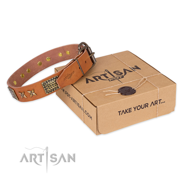 Impressive full grain natural leather dog collar for walking in style