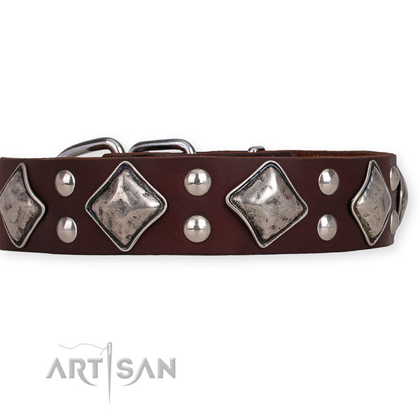 Easy to adjust leather dog collar with extra strong non-rusting fittings