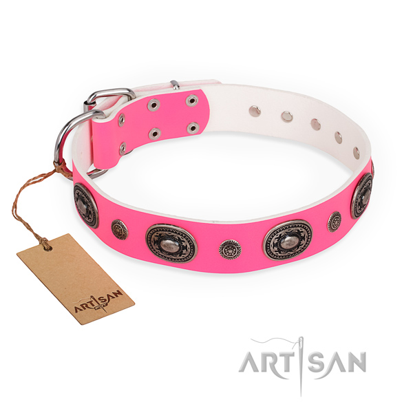 Fashionable design embellishments on genuine leather dog collar
