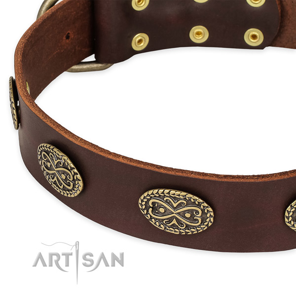 Quick to fasten leather dog collar with extra sturdy non-rusting set of hardware