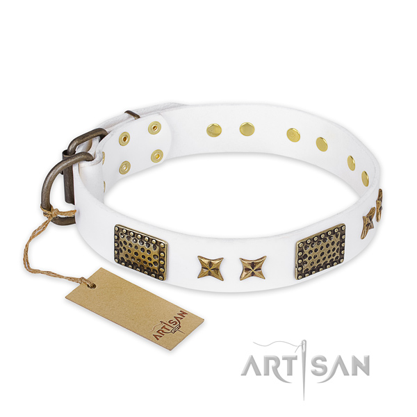 Trendy design stars and plates on natural genuine leather dog collar