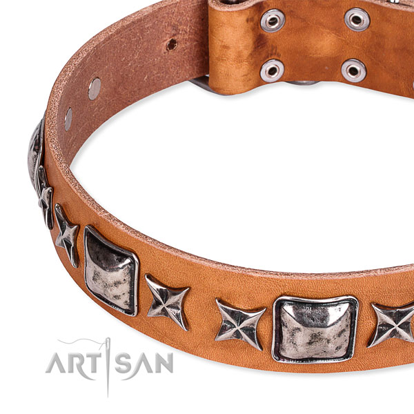Adjustable leather dog collar with resistant rust-proof hardware