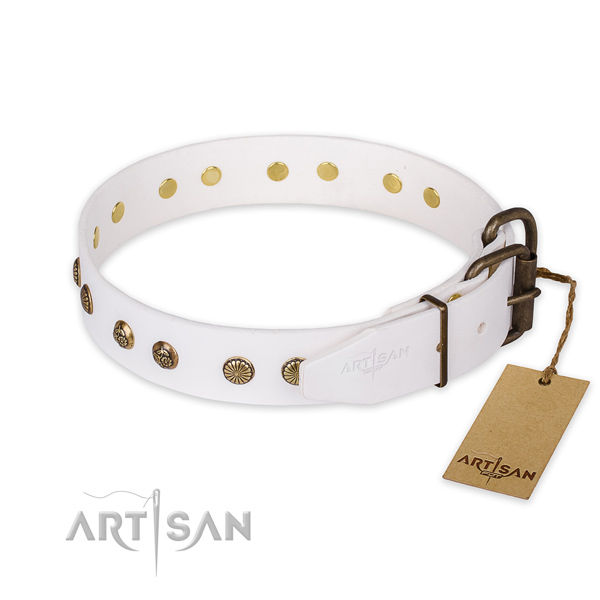 Extraordinary design embellishments on full grain leather dog collar
