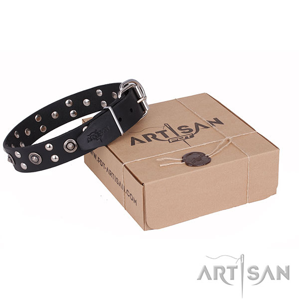 High quality full grain genuine leather dog collar for walking in style