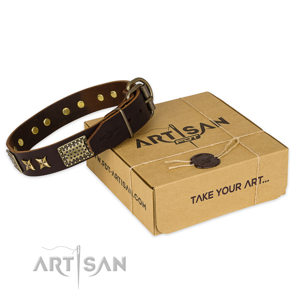 Best quality genuine leather dog collar for walking