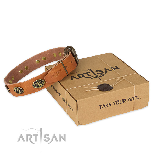 Designer full grain leather dog collar for walking