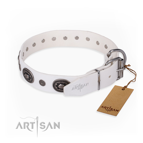 Awesome leather collar for your stunning pet