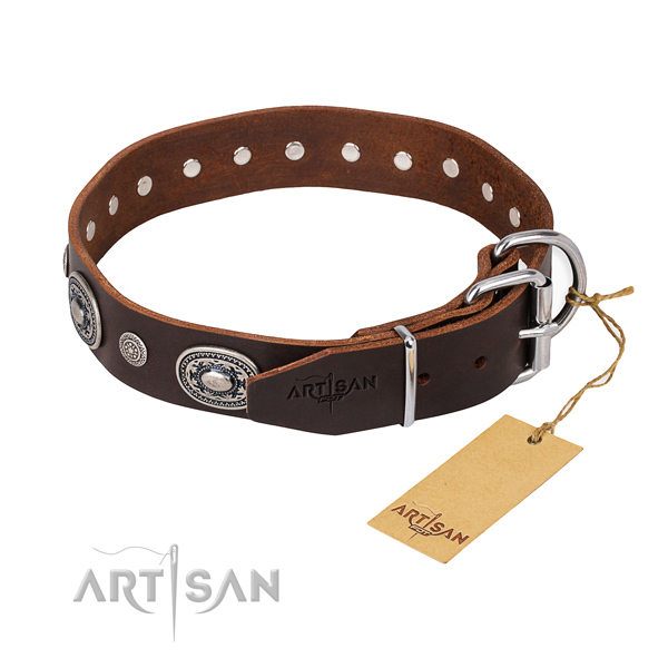 Daily leather collar for your gorgeous canine