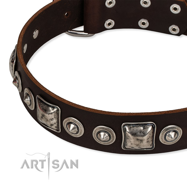 Snugly fitted leather dog collar with extra strong rust-proof buckle