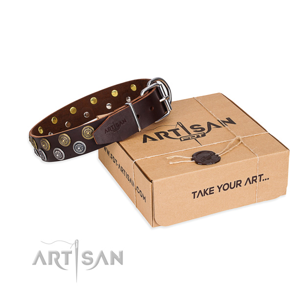 Daily leather dog collar with remarkable adornments