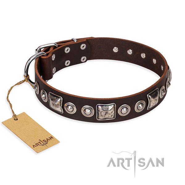 Sturdy leather dog collar with strong hardware