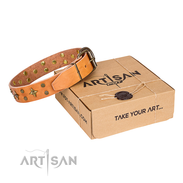 Impressive full grain leather dog collar for walking in style