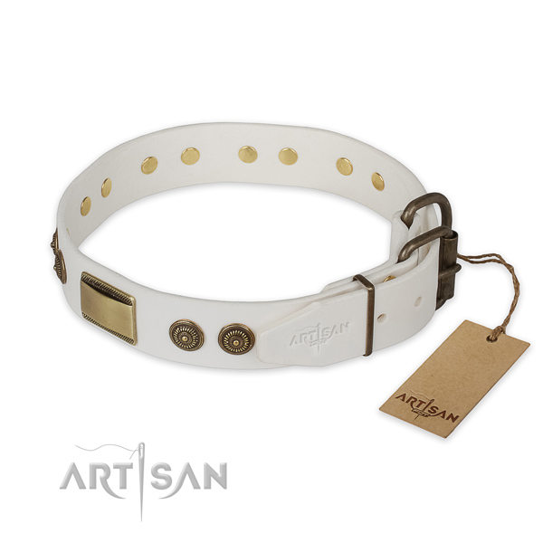 Daily use leather collar with adornments for your doggie