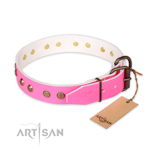 Walking leather collar with decorations for your four-legged friend