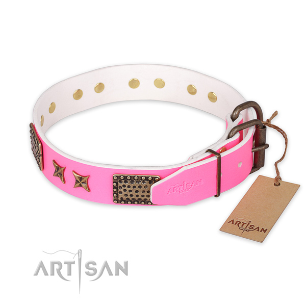 Daily walking leather collar with decorations for your pet