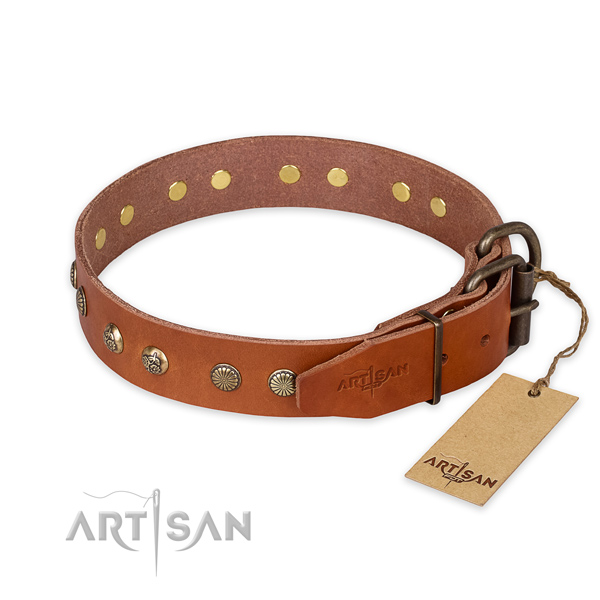 Everyday walking full grain leather collar with decorations for your dog