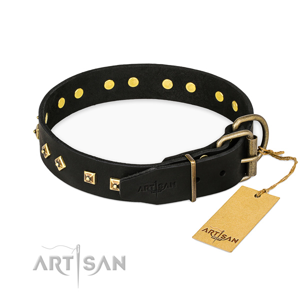 Everyday use leather collar with studs for your four-legged friend