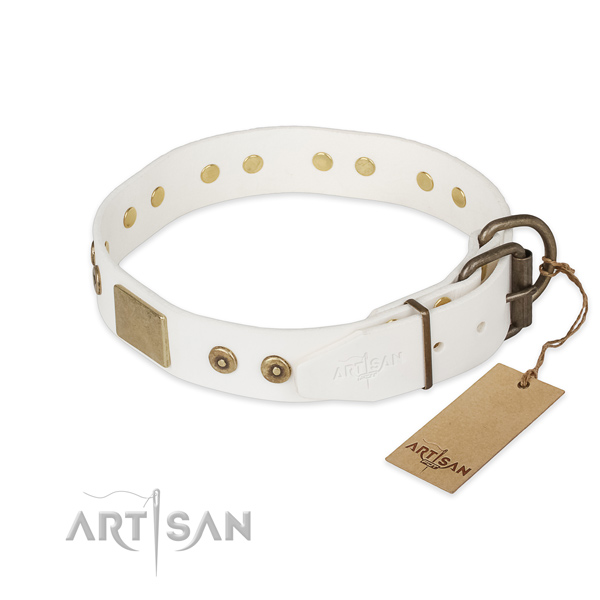 Walking full grain natural leather collar with embellishments for your canine