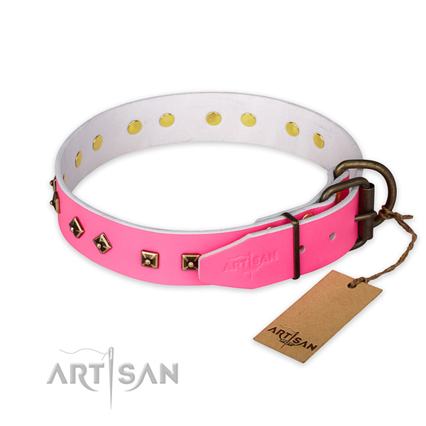 Everyday walking genuine leather collar with studs for your canine