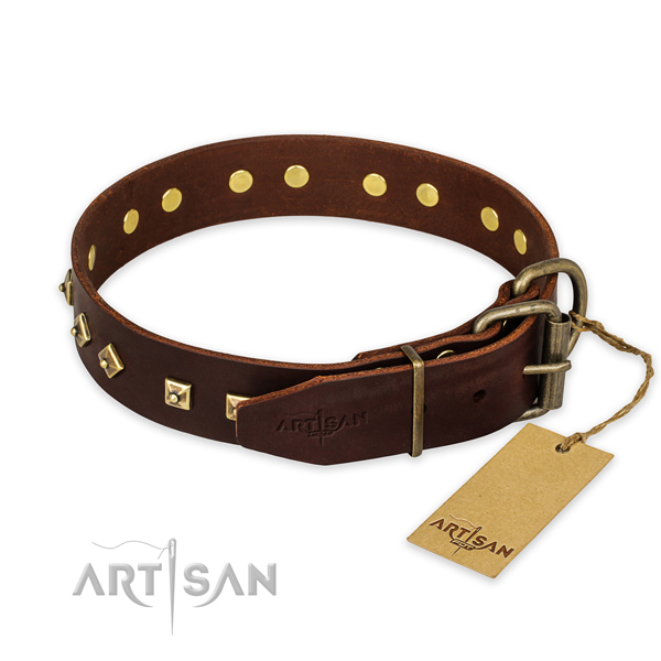 Daily use leather collar with adornments for your dog