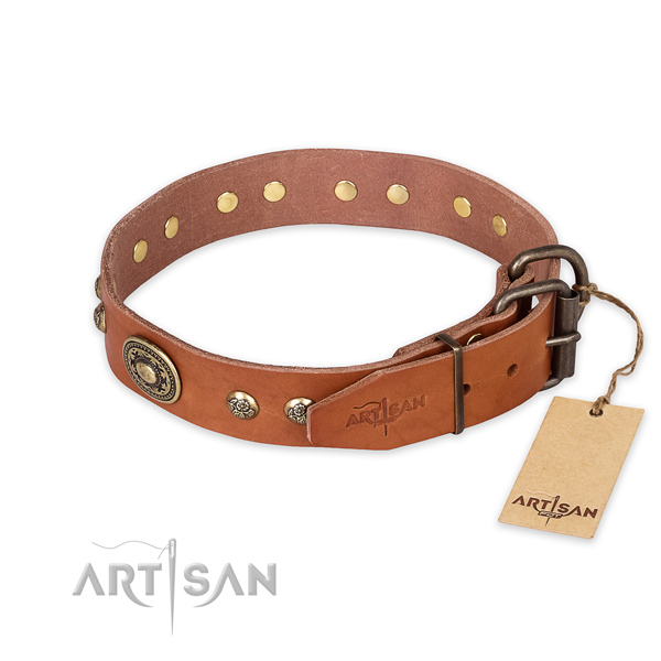 Stylish walking leather collar with studs for your pet