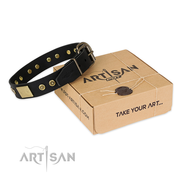 Daily use full grain natural leather collar with adornments for your dog