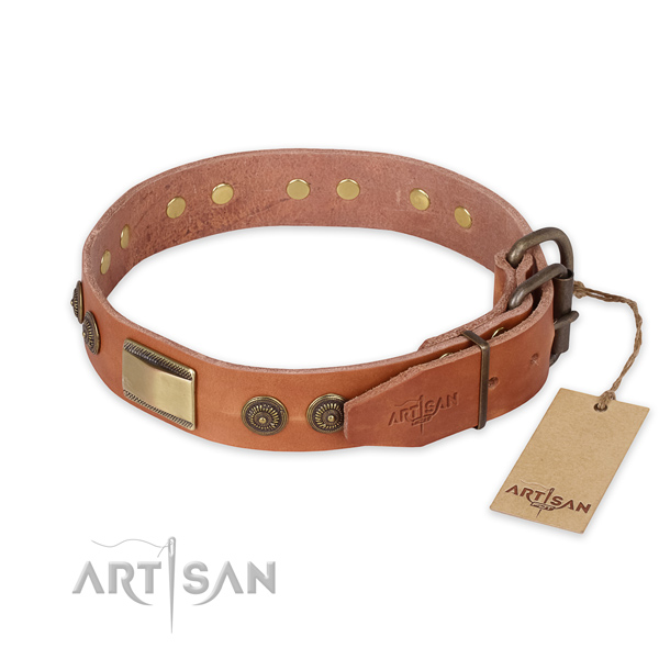Everyday walking full grain genuine leather collar with embellishments for your canine