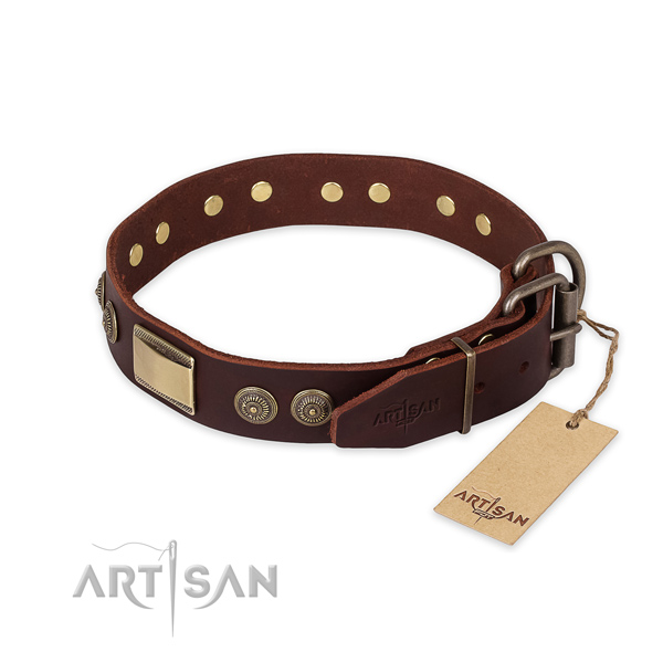 Daily use natural genuine leather collar with embellishments for your doggie