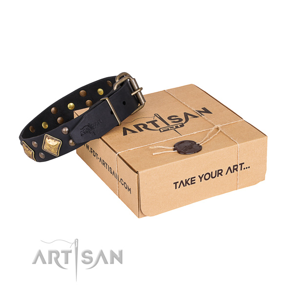 Designer leather dog collar for daily use