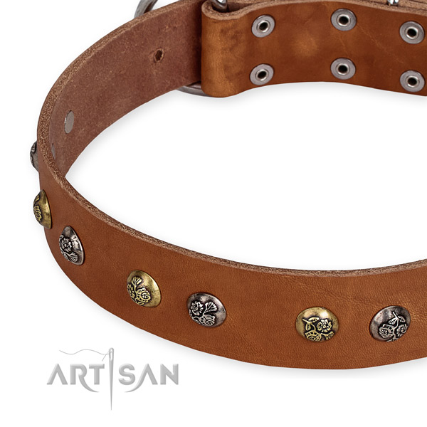 Easy to adjust leather dog collar with extra sturdy durable set of hardware
