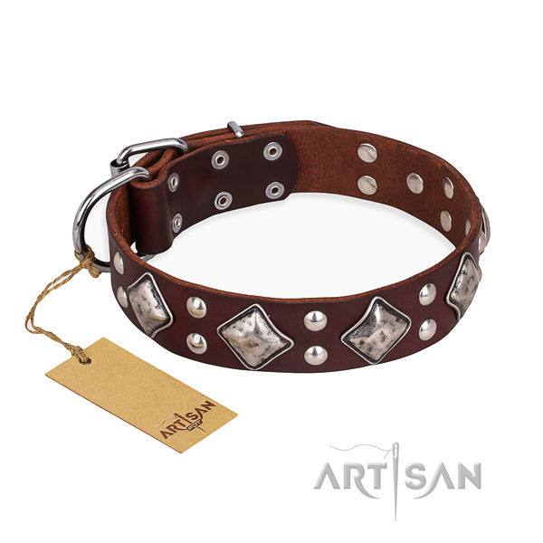 Amazing design adornments on leather dog collar