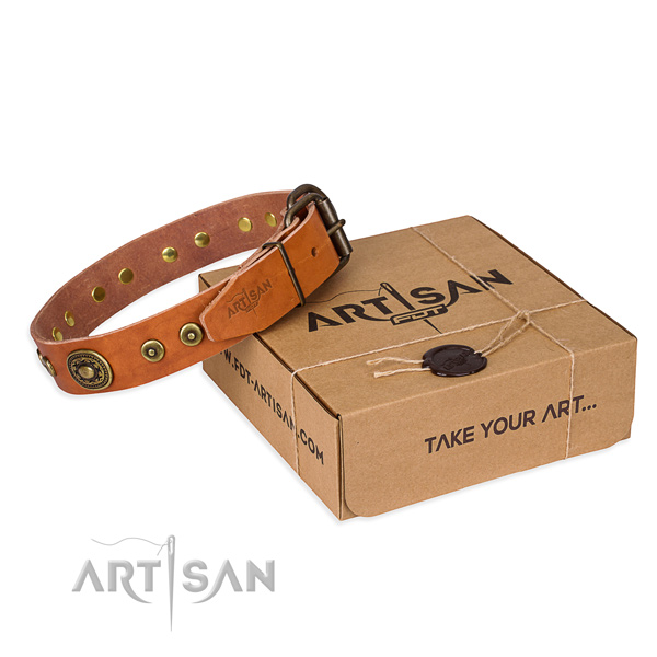 Impressive full grain genuine leather dog collar for stylish walks