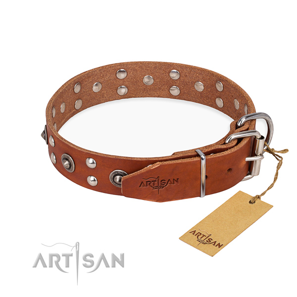 Everyday use full grain leather collar with studs for your canine