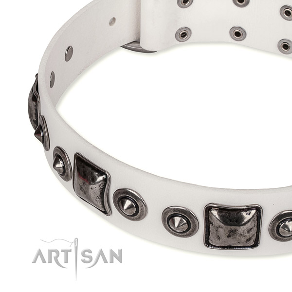 Easy to put on/off leather dog collar with resistant chrome plated hardware