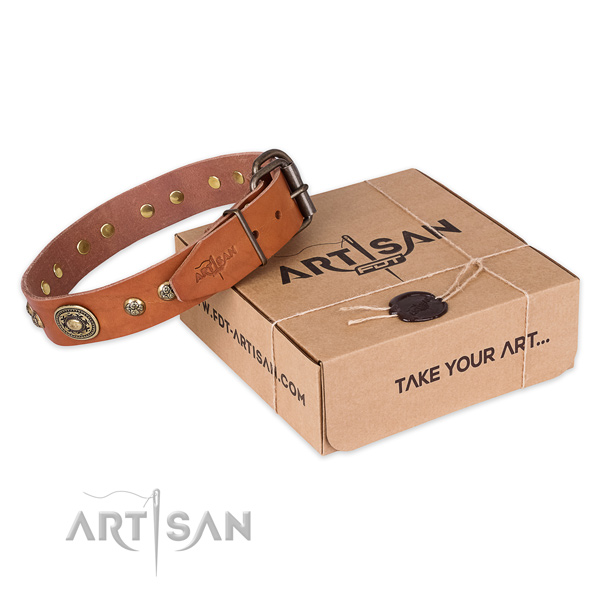 Fashionable genuine leather dog collar for walking in style