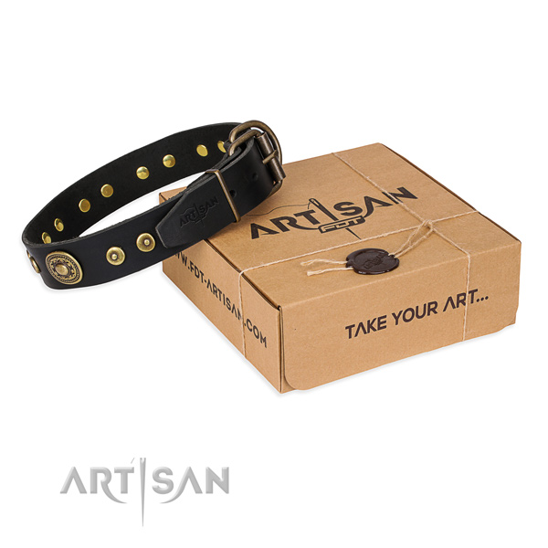 Awesome full grain natural leather dog collar for walking in style