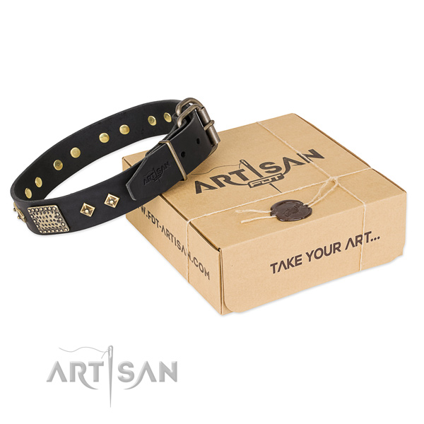 Fine quality full grain leather dog collar for stylish walks