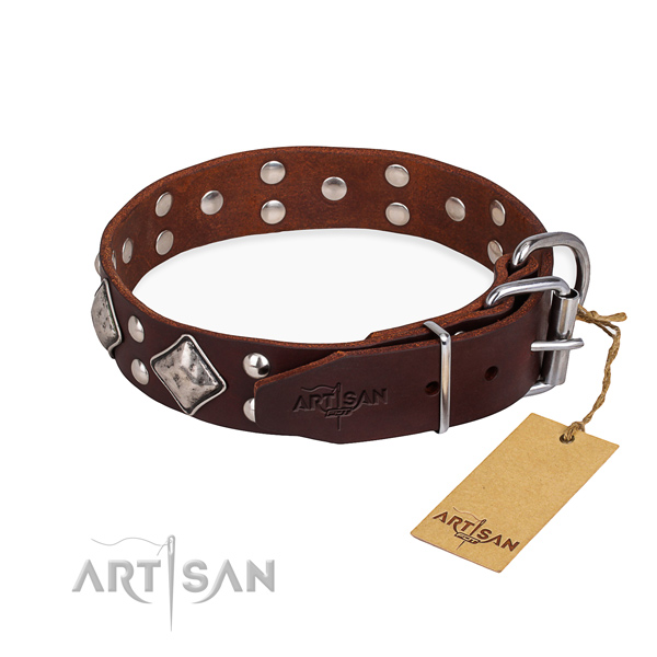 Everyday leather collar for your noble pet
